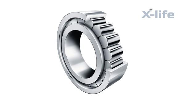 Schaeffler rolling bearings and plain bearings: Full-complement cylindrical roller bearing