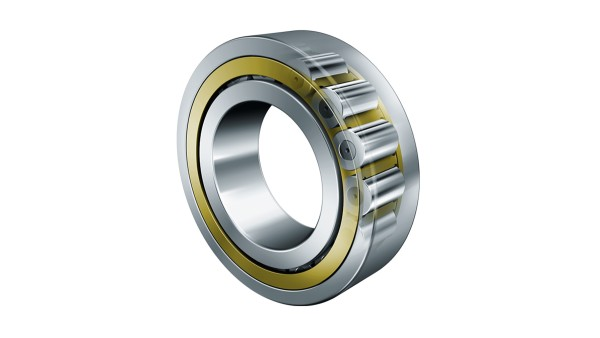 Cylindrical roller bearings with torus-shaped rollers